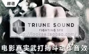 动作电影武打搏斗拳击脚踢音效素材包(Triune Sound Fighting SFX)