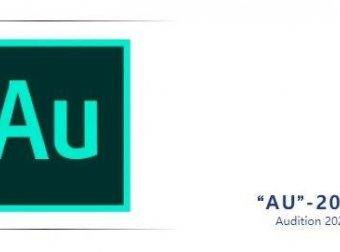 AU2020版详细安装教程